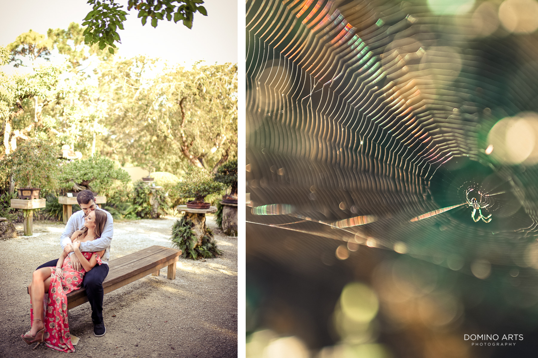 Details at Morikami Museum and Japanese Gardens Engagement