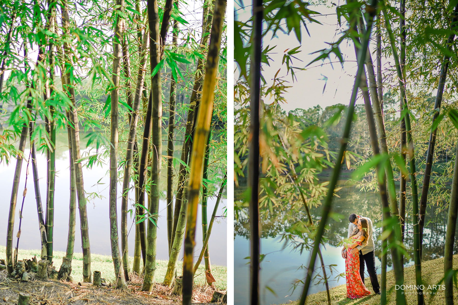 Lake and bamboo at Morikami Museum and Japanese Gardens Engagement photo session
