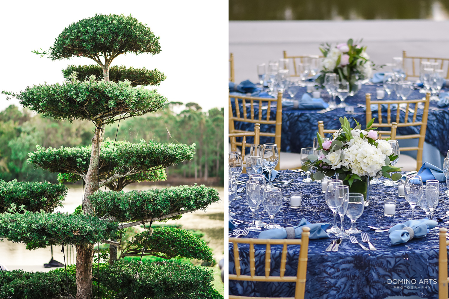 Decor Idea details for Birthday at Morikami Museum and Japanese Gardens