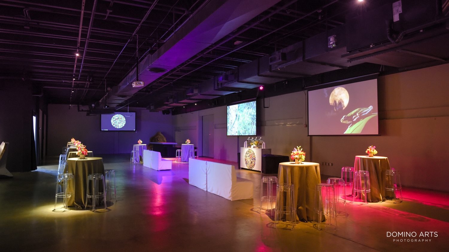 Biophilia Exhibition Corporate Event Gallery of Amazing Things Miami