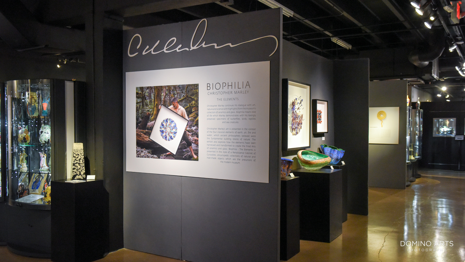 Biophilia by Christopher Marley a dialogue with Art, Nature and Science presented by Gallery if Amazing Things