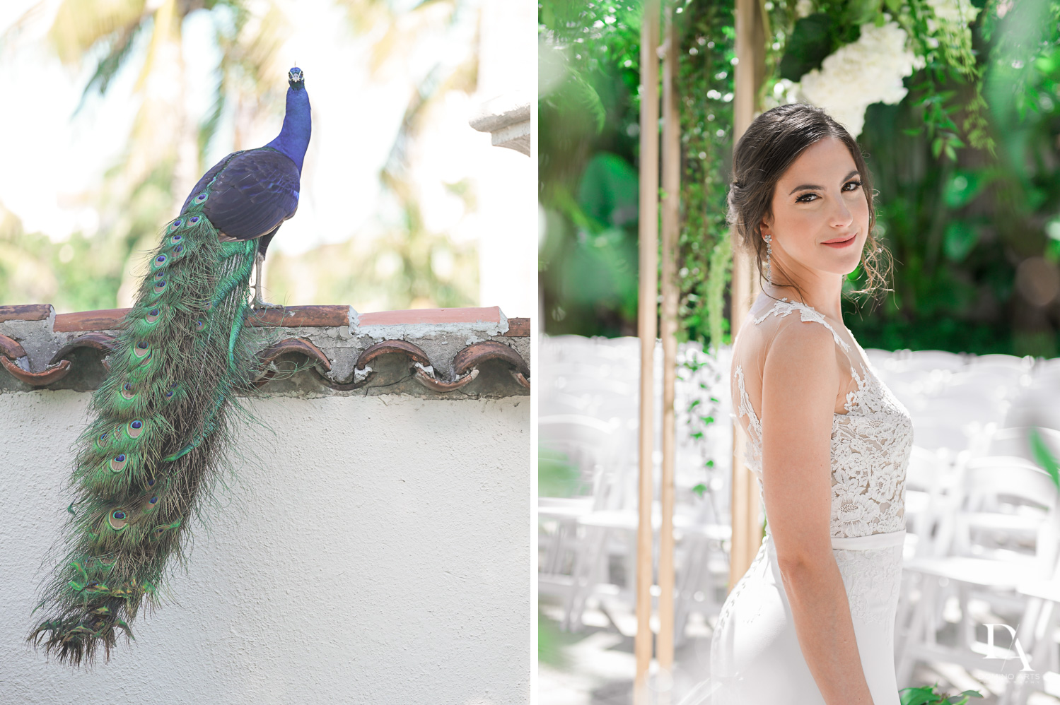 peacocks at Tropical Garden Wedding at Fisher Island Miami by Domino Arts Photography