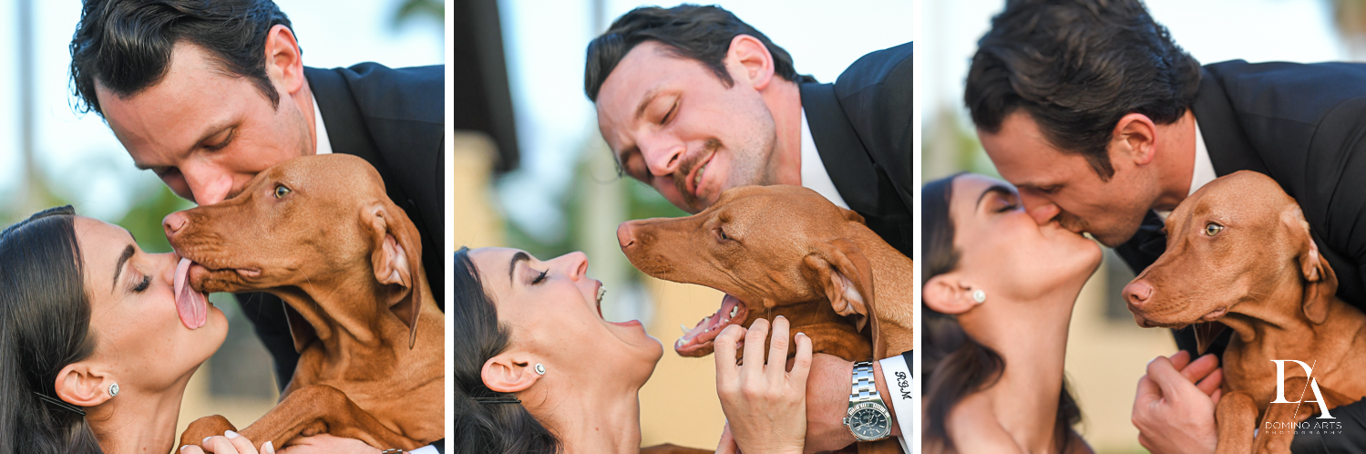 dog photos at Stunning Golf Course Wedding at PGA National Palm Beach by Domino Arts Photography